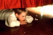 Один дома / Home Alone (Макалей Калкин, 1990) 17c044204861896